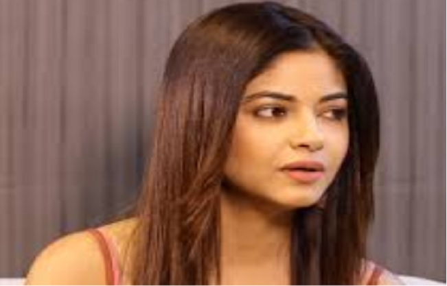 mumbai, Actress Meera Chopra, father robbed,showing knife