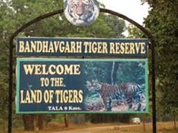 sehdol. Bandhavgarh National Park ,will be open , tourists, October 1