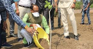 bhopal, Chief Minister ,Shivraj Singh Chauhan planted, almond plant ,smart garden